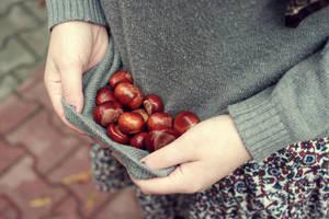 Autumn II by LaylaRouge