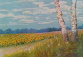 sunflowers by zelionka