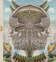 Kinetic Depth by koalacid