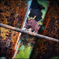 rusty by katpi