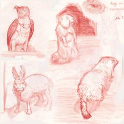 Random animal sketches by SaisDescendant