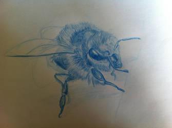 Bee illustration WIP by SaisDescendant
