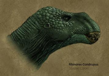 Rhinorex Condrupus Reconstruction by SaisDescendant
