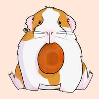 Guinea Pig: CuiCui by Eriniin