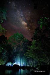 Milky Way by melvynyeo