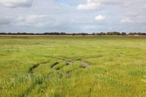Field stock3 by faestock