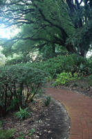 Boas Gardens6 by faestock