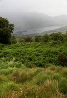 Ring of Kerry8 by faestock