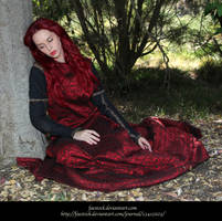 Rose Red 4 by faestock