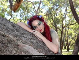 Dryad 8 by faestock