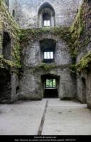 Blarney 6 by faestock