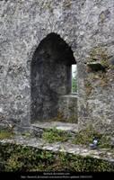 Blarney9 by faestock