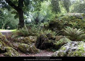 Blarney21 by faestock