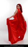 Cardinal9 by faestock