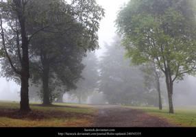 Misty Path by faestock