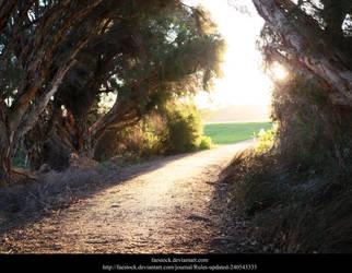 Golden Lane 2 by faestock