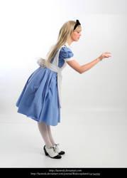 Alice14 by faestock
