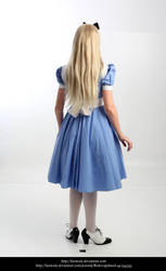 Alice 23 by faestock