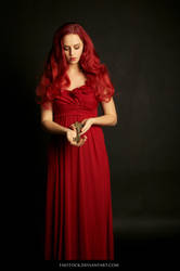 Scarlet 17 by faestock