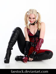 Harley Quinn 4 by faestock