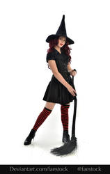 Hocus Pocus -  Witch stock model reference 4 by faestock