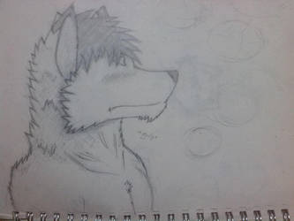 fur and headshot practise by irfan9835
