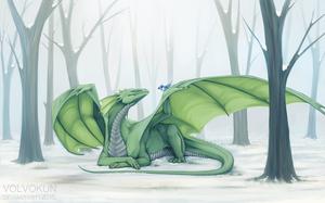 Snowy Days and Bluejays by VolVokun