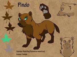 Pindo ref by Nothofagus-obliqua