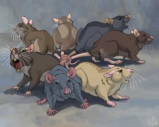Rat King by Nothofagus-obliqua