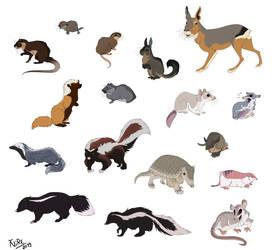 A few small Patagonian mammals by Nothofagus-obliqua