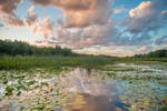 Sunset Pond Stock by little-spacey