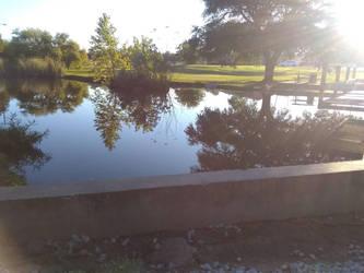my pond by vangogh2005