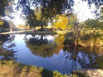 Pretty Pond by vangogh2005