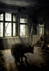 Looking for misery by Silberlichten