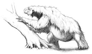 The Slothman by Asanbonsam