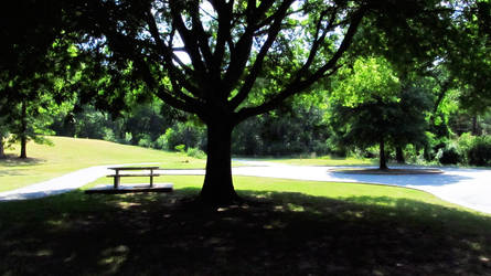 Picnic Table by Silver-Willow04