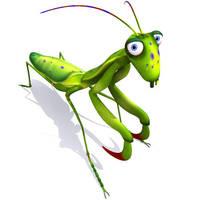 Mantis Louva-deus by marciolcastro