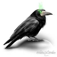 The Crow by marciolcastro