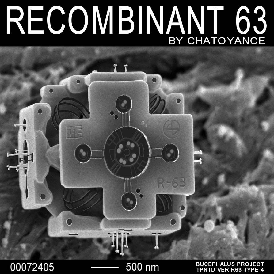 Recombinant 63 cover art by Aealacreatrananda