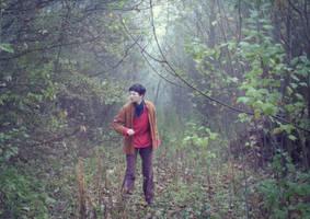 Merlin - foggy morning by Ta-moe
