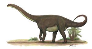 Rhoetosaurus brownei by Gogosardina