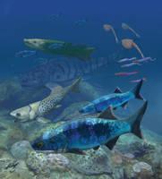 Mimipiscis bartrami on the Gogo reef by Gogosardina