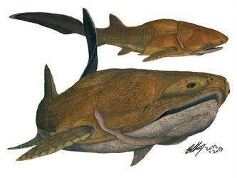 Entelognathus #4: Study of a weird fish by Gogosardina