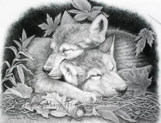 Sweet dreams by JeannieMarie33