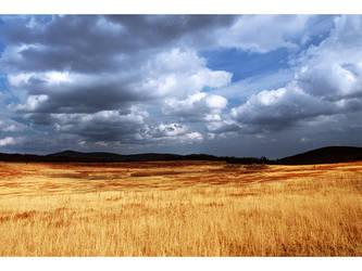 Big Meadow 2 by rokit13