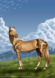 Behoka - Akhal Teke horse by ClaireLyxa