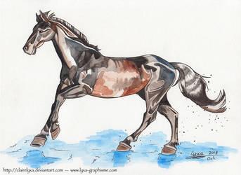 Watercolor of a random horse by ClaireLyxa
