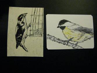 Bird drawing ATCs by KatarinaNavane
