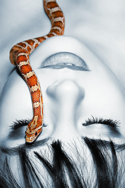 Snake by eugenebuzuk