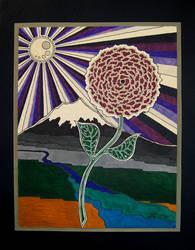 Shasta Rose by shakedown1970